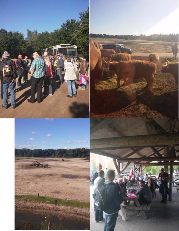 4 foto's van leden van de Rampetampers in safaripark de Beekse Bergen: bus, uitslag, neushoorn, buffels
